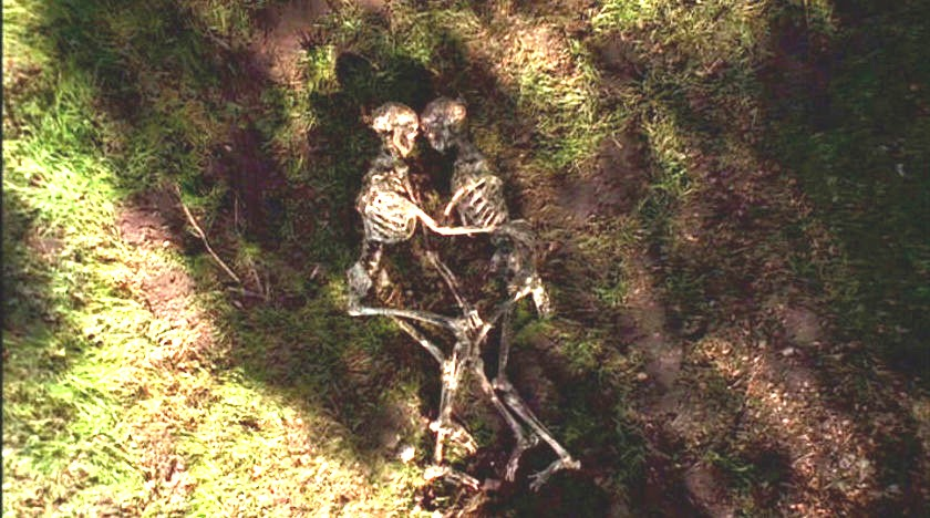 621 FIELD TRIP (Spores)   dans SAISON 06 (1998/1999) 6212