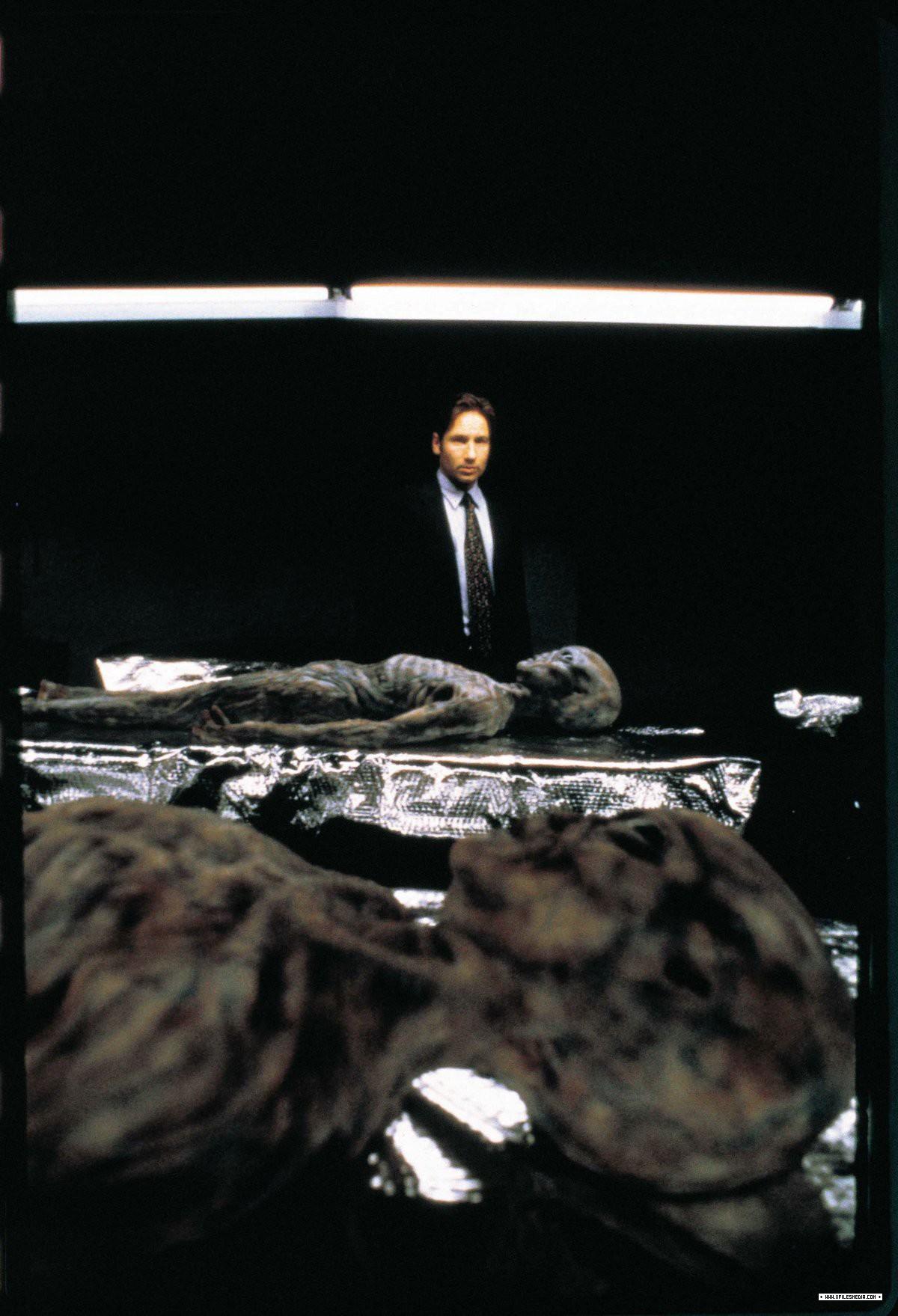 503 REDUX II (La voie de la vérité 2/2)    dans SAISON 05 (1997/1998) 0151